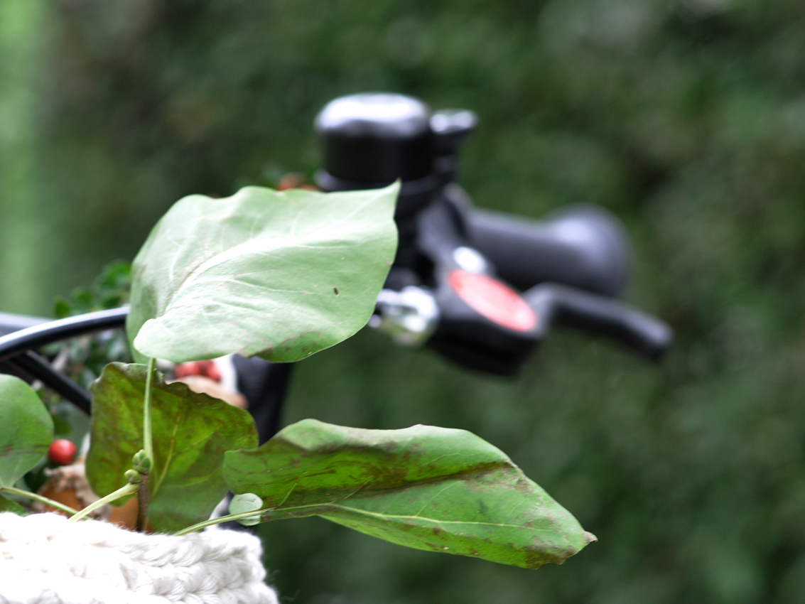 woom Kinderfahrrad Bremse Herbstblatt - DIY Fahrradkorb für Kinder