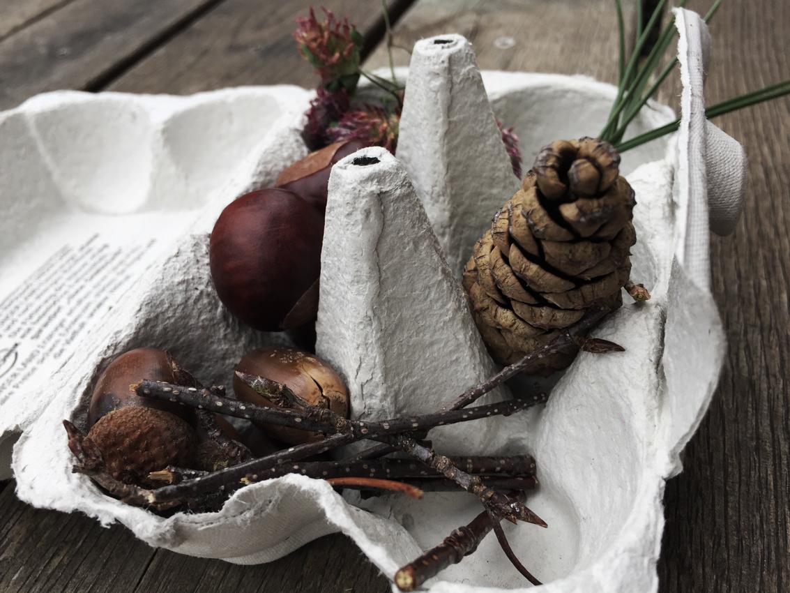 Diy Eierkarton sammeln Druckvorlage - Meine schlichte Herbstdeko und 2 schnelle Bastelideen für Kinder
