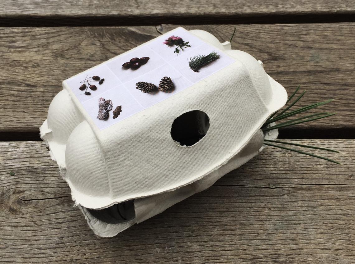 Diy Eierkarton sammeln Druckvorlage Karton - Meine schlichte Herbstdeko und 2 schnelle Bastelideen für Kinder