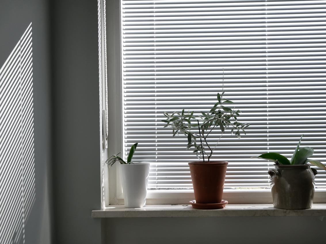 DIY Schlafzimmer Fensterbank Zimmerpflanzen Tontopf - Vom Beistellbett zum Gitterbett in unter 2 Sekunden