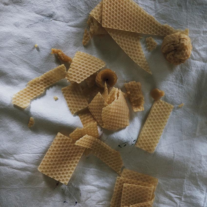 Bienenwachs Wachsreste Wachsplatten Bienenwachsplatte - DIY | Hyazinthen in Bienenwachs - das schönste Upcycling im Frühling