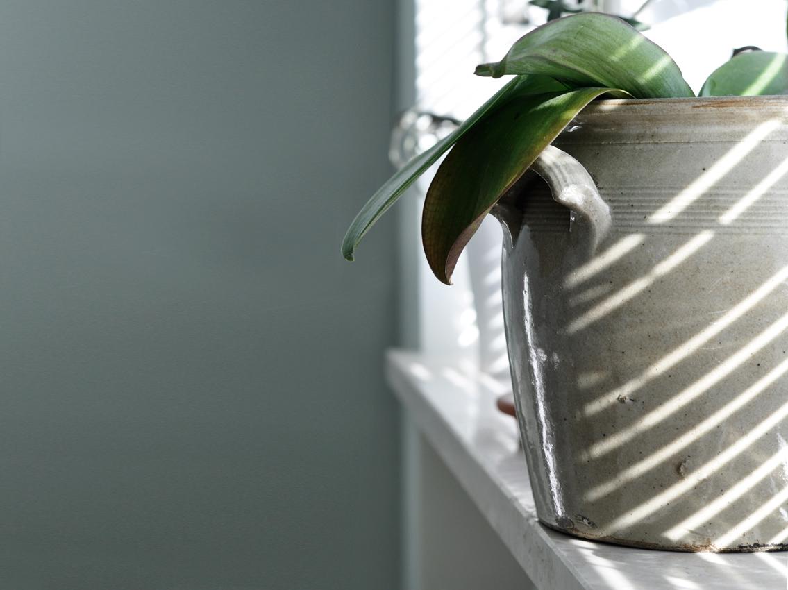 Fensterbrett Orchidee Pflanzen Tontopf vintage gruen Alpina Feine Farben - Mut zur Farbe | Ein Schlafzimmer in Grün
