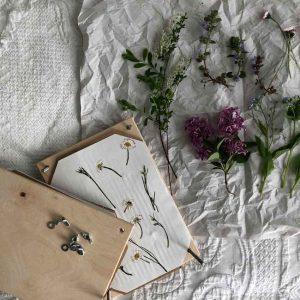 2018 Spiel Blumenpresse Blumen pressen halb Holz 300x300 - Blumenpresse Natur