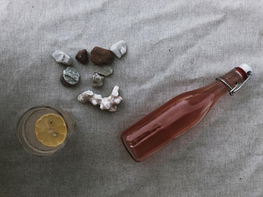 Glas Zitrone Rharbarbersirup Koralle Steine Sommertisch Glasflasche Einmachflasche - Rhabarbersirup | ganz einfach in wenigen Minuten selber machen