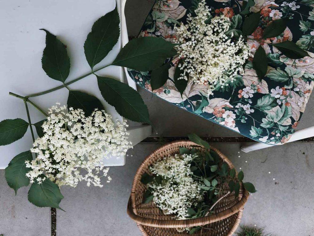 Holunder Holunderdolde Holunderbluete Garten Gartenstuhl Korb 1024x768 - 10 Ideen die du dieses Wochenende mit Holunderblüten machen kannst