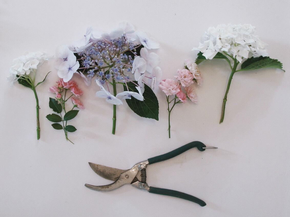 Blumenkranz Gartenschere Haarkranz Kranz binden - DIY | wunderschöne Blumenkränze - einfach und simpel
