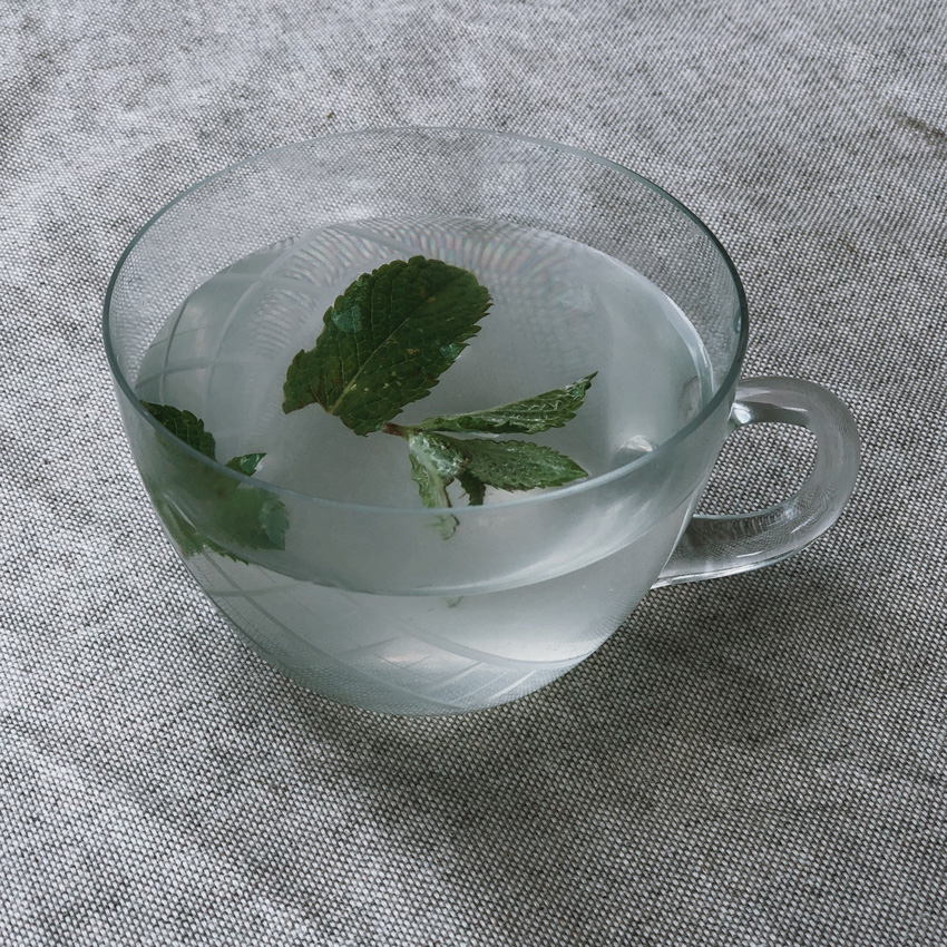 Zitronenlimonade Limonade Minze Glas retro - erfrischende Zitronenlimonade in unter 10 Minuten