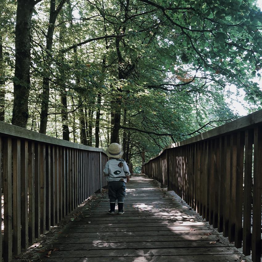11 Walderlebniszentrum gruenwald Wald Familienausflug Muenchen Bruecke - MUNICH | Walderlebniszentrum Grünwald