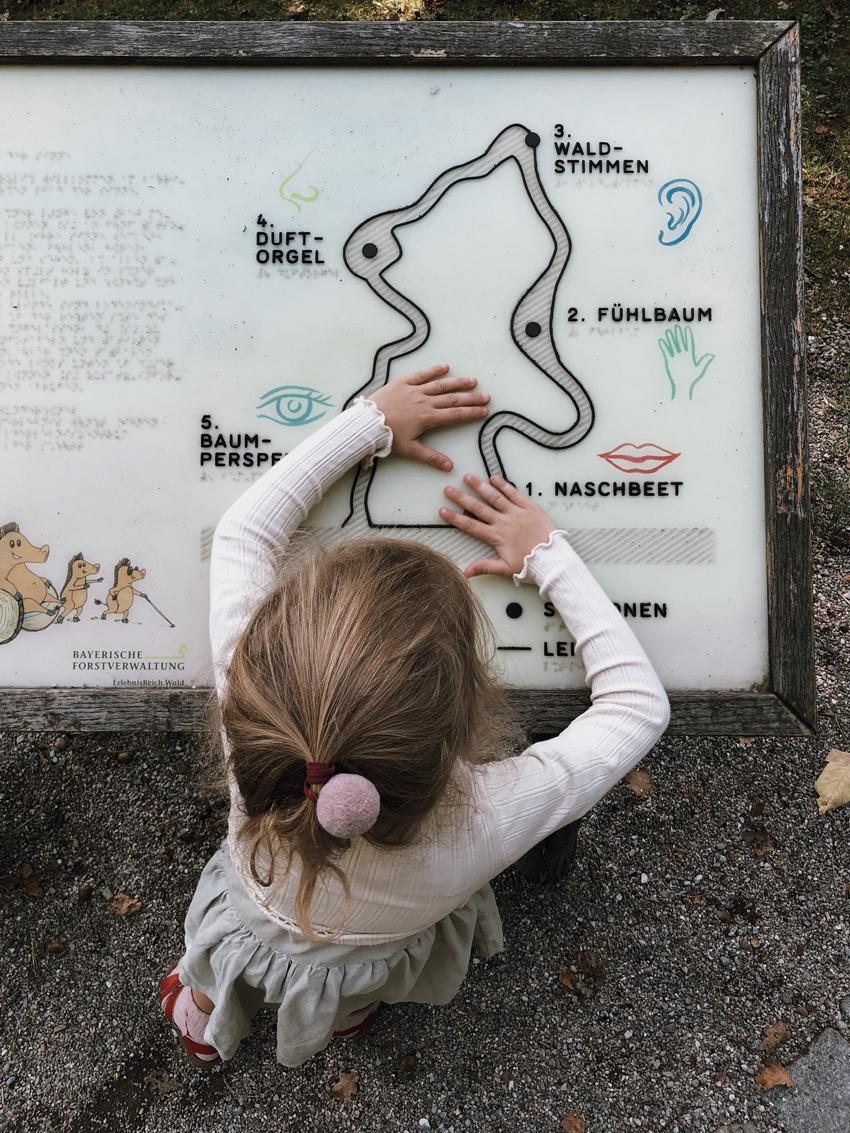 12 Walderlebniszentrum gruenwald Wald Familienausflug Muenchen Sinnespfad - MUNICH | Walderlebniszentrum Grünwald