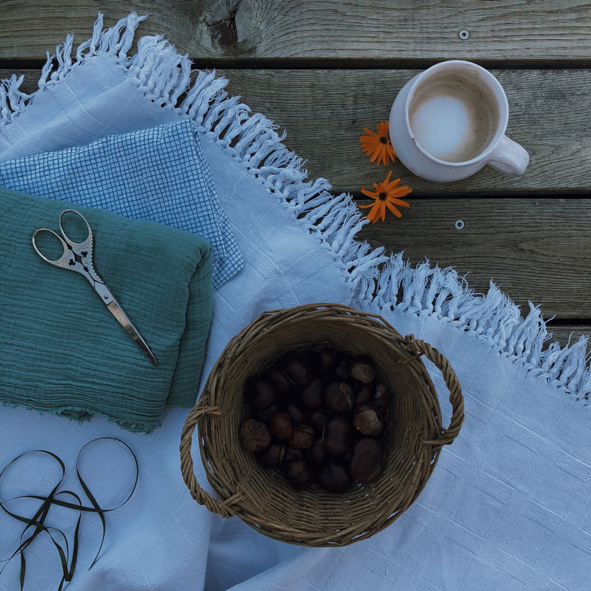 1 coffeeDIY Wurfkastanien - DIY | KW 37