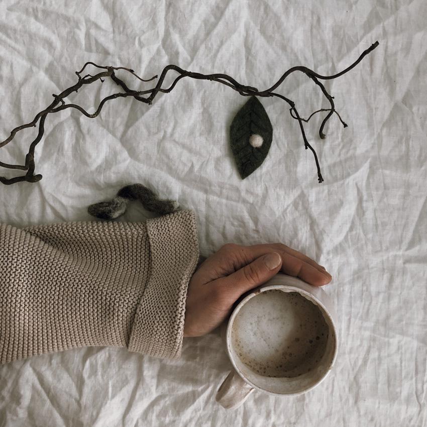 coffeeDIY Raupe Schmetterling Metamorphose 09 - DIY | Metamorphose einer Raupe