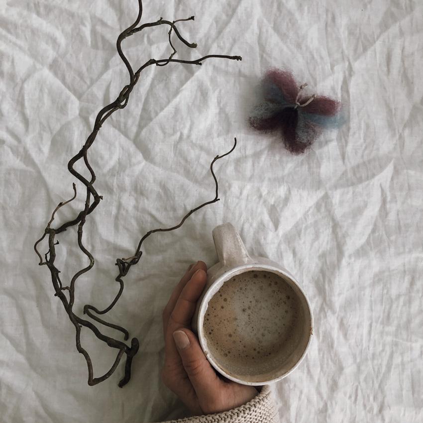 coffeeDIY Raupe Schmetterling Metamorphose 16 - DIY | Metamorphose einer Raupe