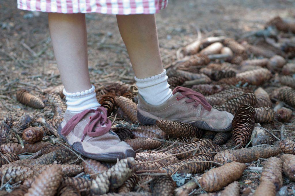 190625 Wildling RMD Igelbuerste emotinal 10 1024x680 - EIGENSTÄNDIG & UNABHÄNGIG | Schuhe putzen mit kleinen und großen Kindern