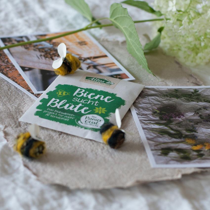 biene bluete projekt saatgut honigbiene allos 1 - Biene sucht Blüte