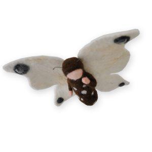 Schmetterling freigestellt