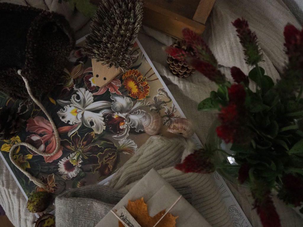 191015 Herbstkleidung 04 1024x768 - gut gekleidet durch den Herbst