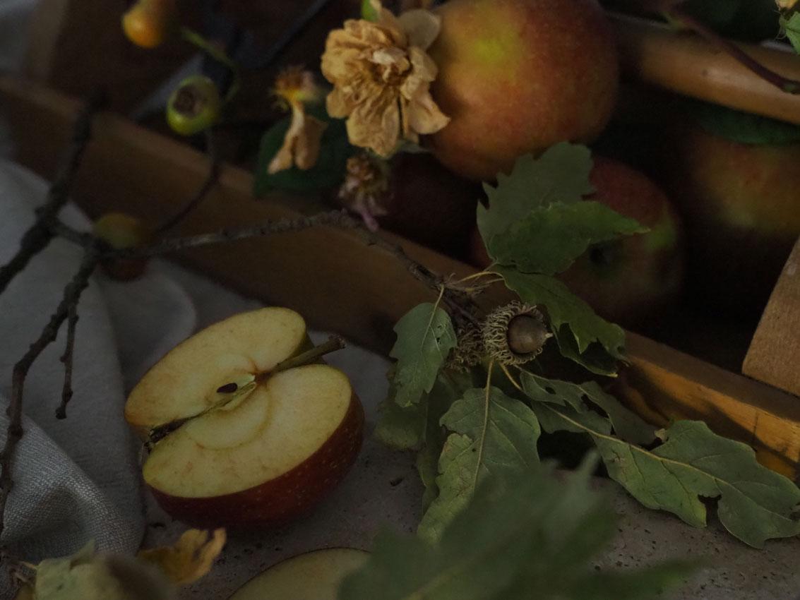 191022 Apfel Hagebutten Rosen Herbst geschnitten - rund um den Apfel | von Apfeltee, Apfelchips und magischen Momenten