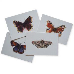 2019 Ode Schmetterling Kunstkarten frei 300x300 - Kunstkarten-Set | Schmetterlinge, Falter, Motten