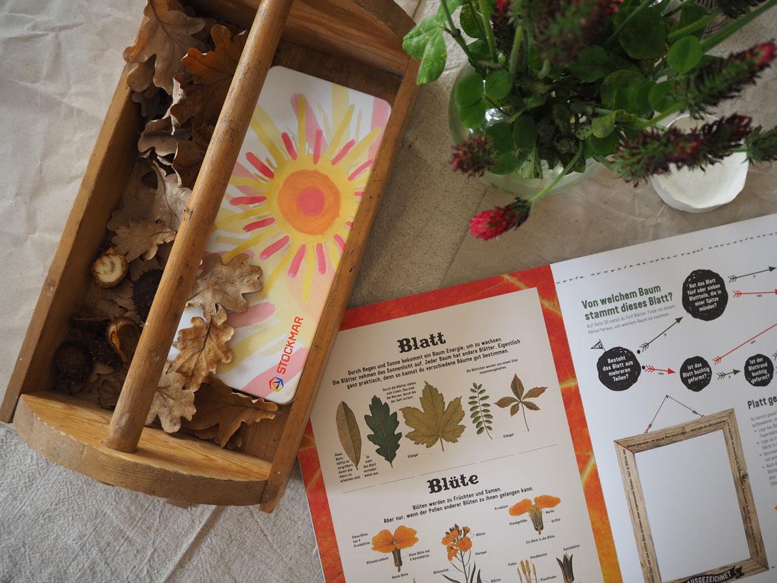 Jahreszeitentisch Herbst Blaetter Geist Eichelblatt Holzkiste Buch - Im Herbst | sammeln, leben, erfahren