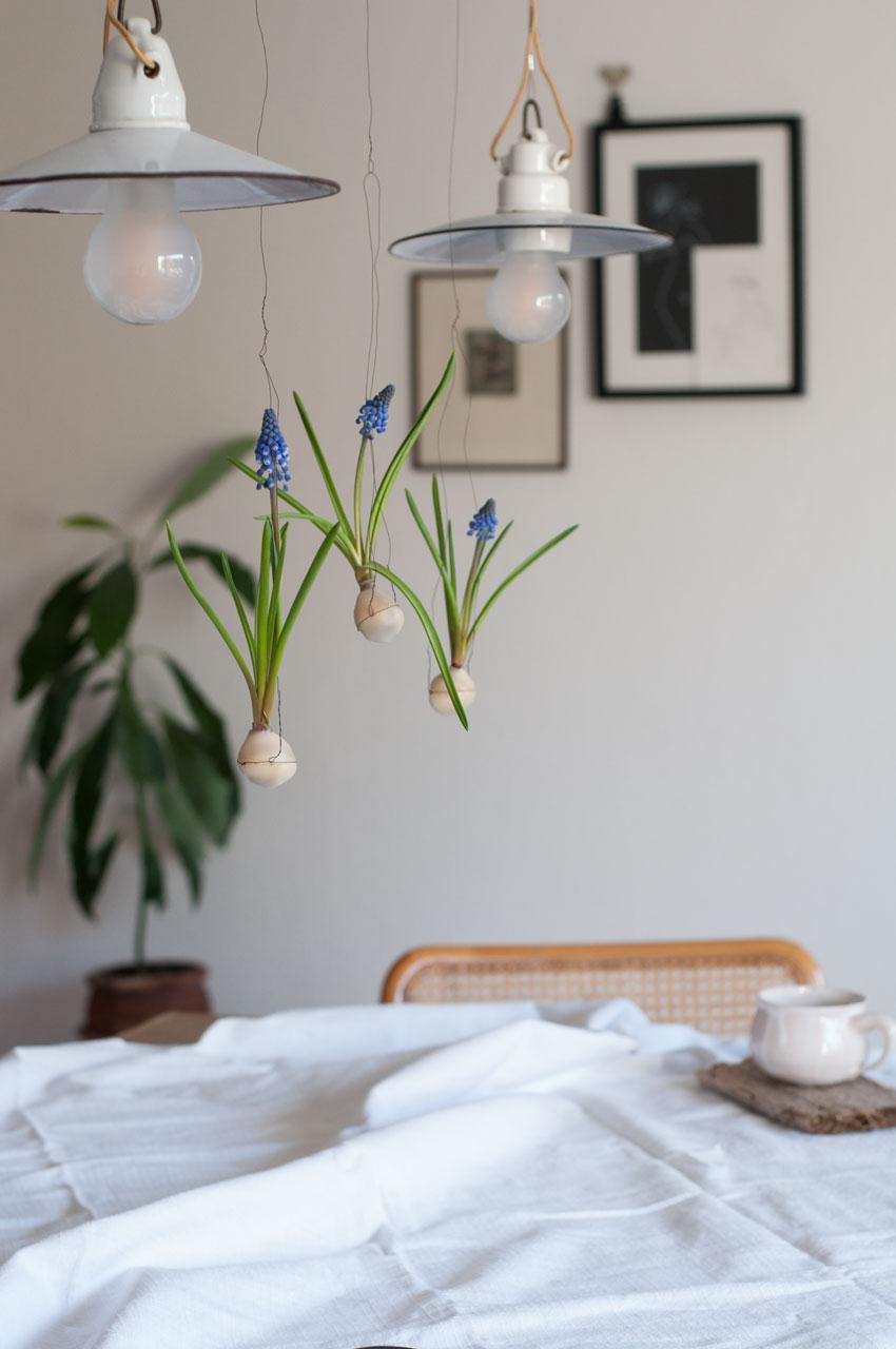 diy traubenhyazinthen wachs zwiebel 01 - Traubenhyazinthen in Wachs | mein hängender Blumengarten